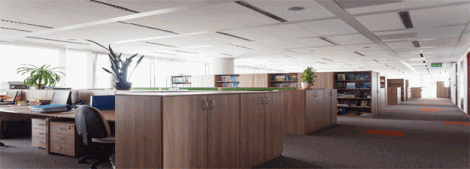 The role of Acoustics in enhancing workplace productivity